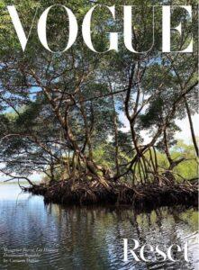 Tras críticas por foto de playa de Samaná con basura, Vogue publica paisajes dominicanos