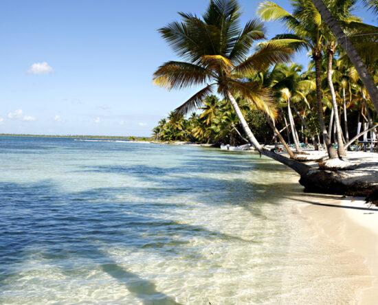 COE autoriza el uso de playas y deportes acuáticos en todo el país
