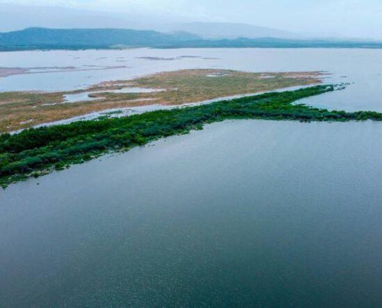 Denuncian Laguna Cabral está siendo depredada